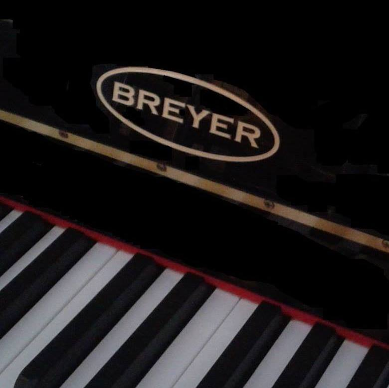 Breyer Instrumentos